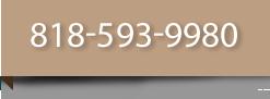 Dancetitute phone: 818-593-9980